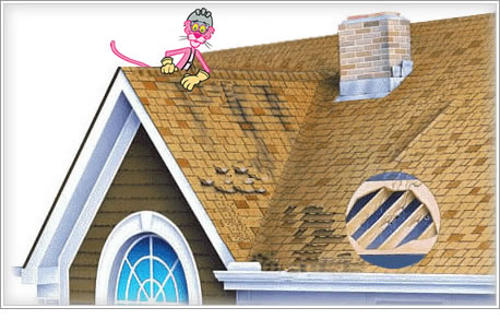 frank stevens roofing woodbury ny